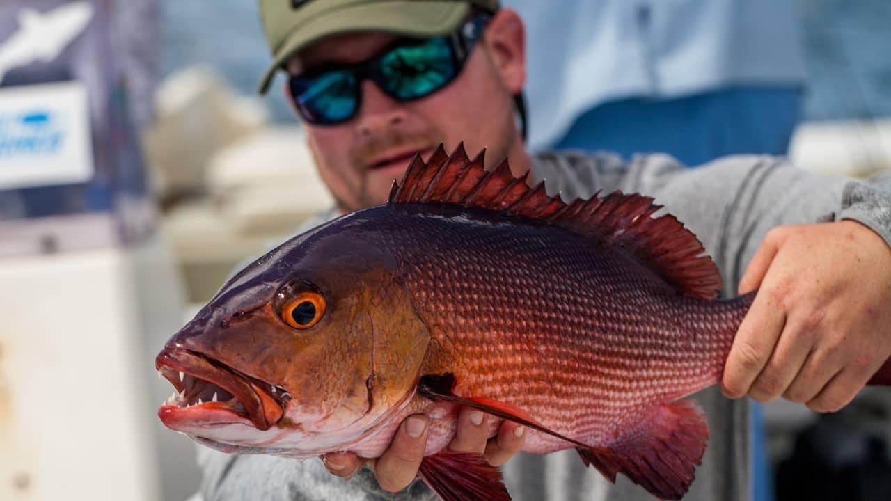 Best Fishing Sunglasses 2018 – Best Polarized Sunglasses (Buyer\'s ...