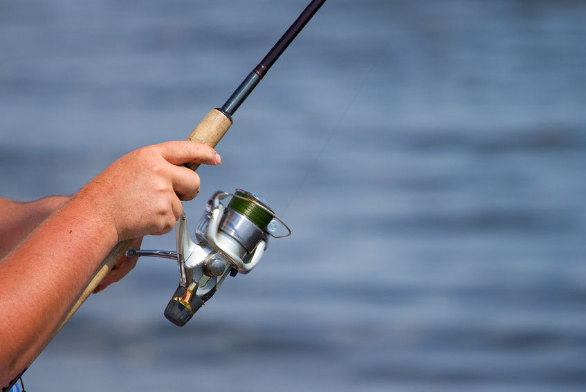 Best Saltwater Spinning Reel – Top Saltwater Open Faced Reels